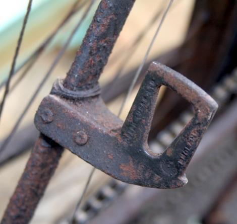 1902leaf8