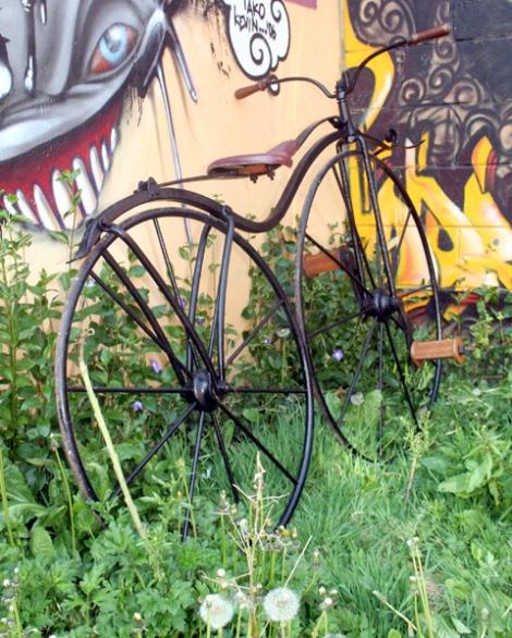 velocipede8